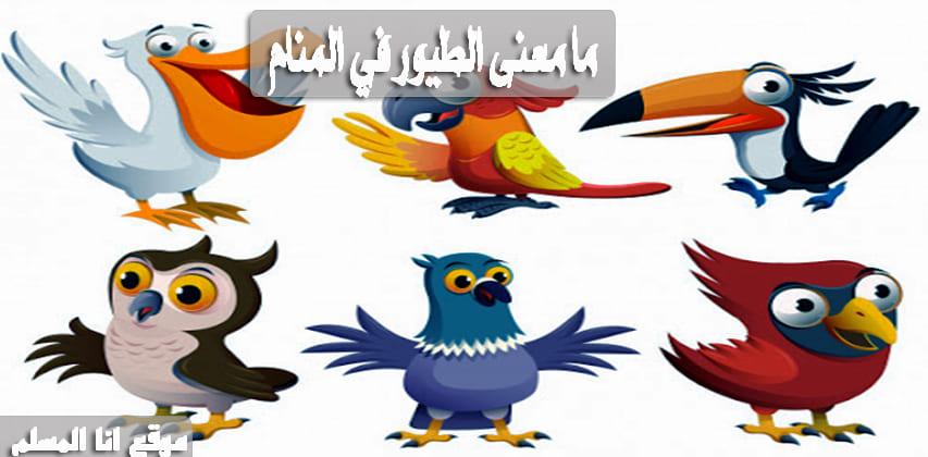 حلم جميع انواع الطيور
