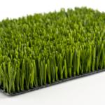 حلم الارض الخضراء او الجرداء