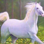 حلم الحصان فى المنام