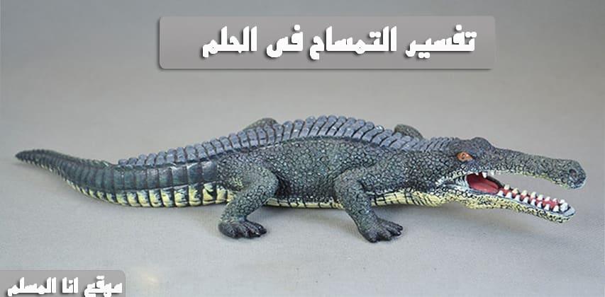 صورة تفسير التمساح في الحلم