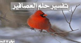 تفسير حلم العصافير