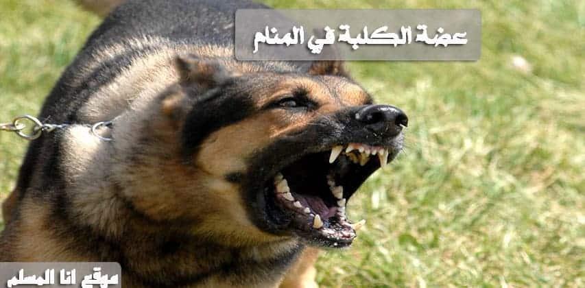 عضة الكلبة في المنام