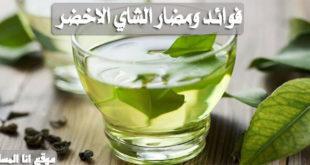 فوائد ومضار الشاي الاخضر