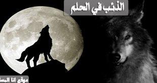 الذئب في الحلم