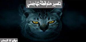 تفسير حلم قطة تهاجمني